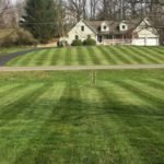 Lawn Care in Green Township, NJ