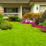 Front yard landscaping and beautiful lawn and garden