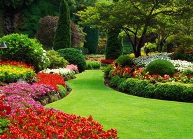 lovable beautiful garden design