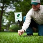 Lawn Maintenance fertilization and weed control